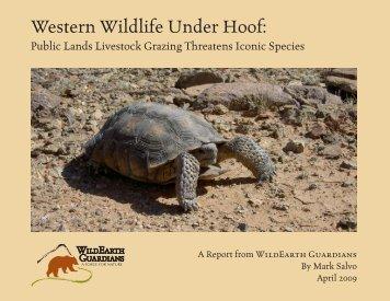 Western Wildlife Under Hoof - WildEarth Guardians