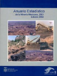 2001 - Servicio Geológico Mexicano