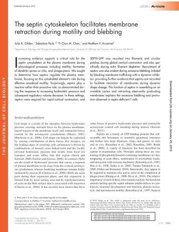 The septin cytoskeleton facilitates membrane retraction ...An ...