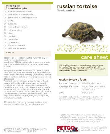 Petco Tortoise Related Keywords & Suggestions - Petco Tortoise Long ...