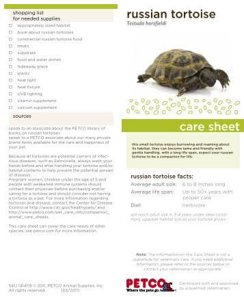 russian tortoise care sheet - Petco