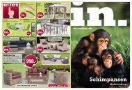 Schimpansen - in-online.ch