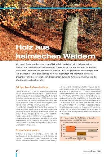 Holz aus heimischen Wäldern - Wald & Klima