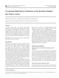 Exceptional High Queen Production in the ... - Ecologia - USP
