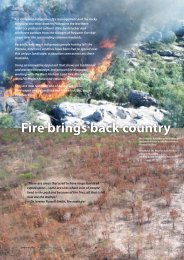 Fire brings back country - EnviroNorth