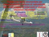 Torino AIRP.pdf
