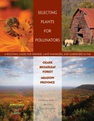 Ozark Broadleaf Forest - Pollinator Partnership