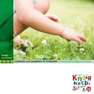 Leukämien und Lymphome im Kindesalter - Kinderkrebsstiftung