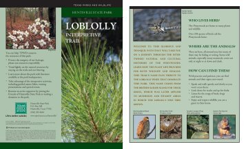 LOBLOLLY LOBLOLLY - Texas Parks & Wildlife Department