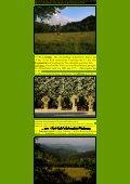 Ahr IV - Kunstwanderungen - Seite 6