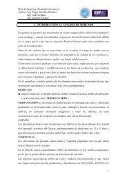 Plan de Negocios (Resumen Ejecutivo) - DSpace en ESPOL