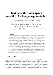 Task-specific color space selection for image ... - Chromasens