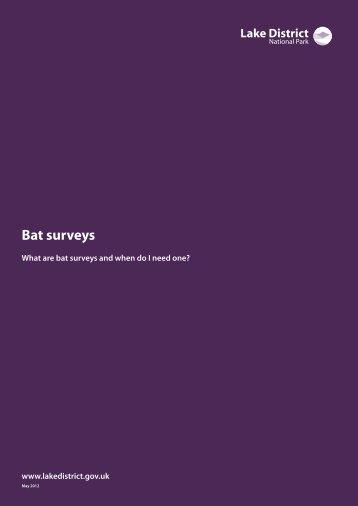 Bat surveys guidance note (PDF) - Lake District National Park
