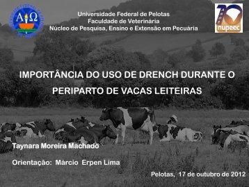 Apresentação do PowerPoint - Universidade Federal de Pelotas