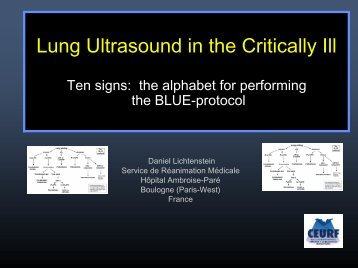 Lung Ultrasound in the Critically Ill - Crashing Patient