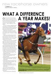 WHAT A DIFFERENCE A YEAR MAKES! - NSW Racehorse Owners ...