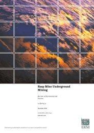 Rasp Mine Underground Mining Third Line - NSW Department of ...