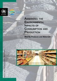 Assessing the Environmental Impacts of Consumption and ... - UNEP
