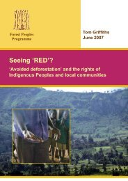 Seeing 'RED'? 'Avoided deforestation' - Forest Peoples Programme