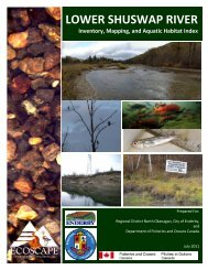 Lower Shuswap River Inventory and Mapping - Regional District of ...