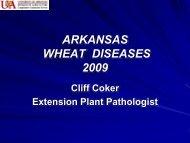 ARKANSAS WHEAT DISEASES 2009