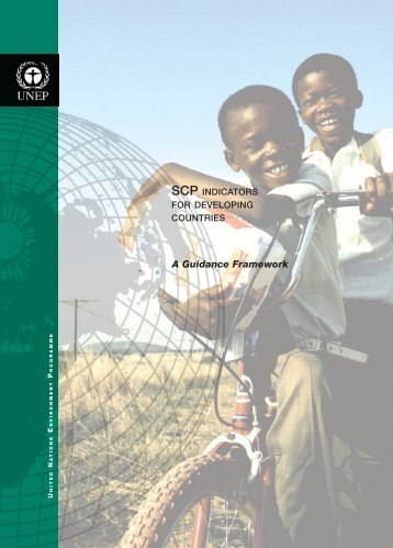 SCP Indicators For Developing Countries - DTIE