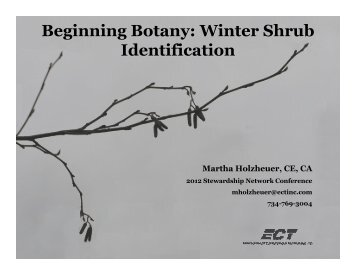 Beginning Botany: Winter Shrub Identification