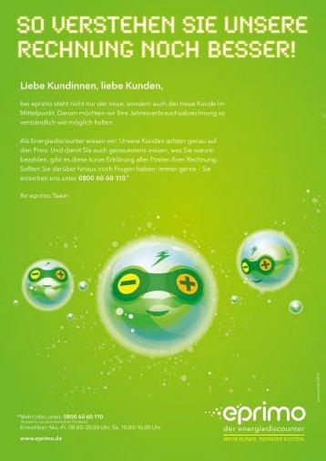 PDF-Download Rechnungserklärung (507 KB) - Eprimo