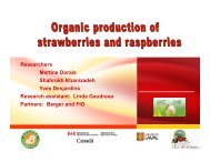 High tunnel Production of Organic Strawberry