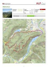 Bergsteigen Müllnerhorn - Schneizlreuth