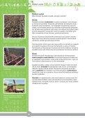 Maatilan antimet.pdf - MTK - Page 6