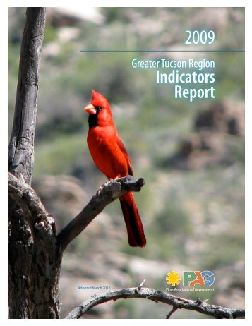 Greater Tucson Region Indicators Report - Pima Association of ...
