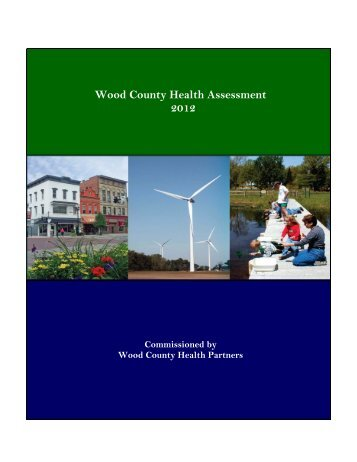 Wood County Health Assessment 2012 - Hospital Council of ...