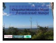Chiquibul-Montañas Mayas - Eco-Index