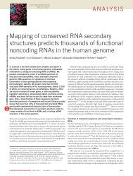 Mapping of conserved RNA secondary structures predicts ... - TBI