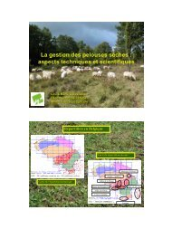 La gestion des pelouses sèches : aspects techniques et scientifiques
