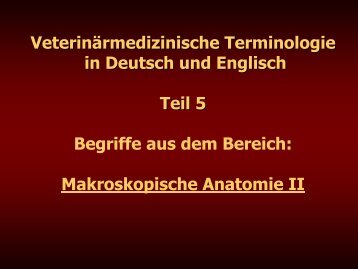 Teil 5 - Veterinärmedizinische Universität Wien