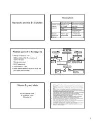 Macrocytic anemia: B12 & folate Vitamin B12 and folate