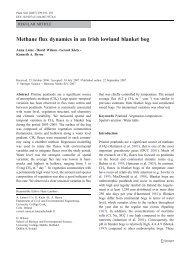 Methane flux dynamics in an Irish lowland blanket bog - University ...