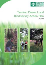 Biodiversity Action Plan - Taunton Deane Borough Council