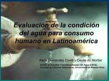 Evaluación de la condición del agua para consumo humano en ...
