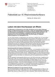 Leben mit dem Hochwasser am Rhein - Faktenblatt - admin.ch