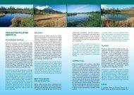 Info list o projektu (v slovenskem jeziku) - Wetman