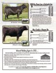 PAID - Cowbuyer - Page 6