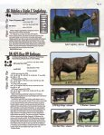 PAID - Cowbuyer - Page 7