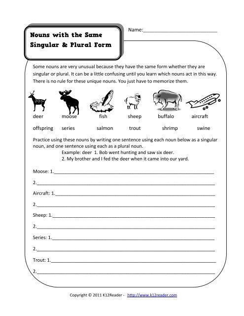Nouns With Same Singular Plural Form Noun Worksheets