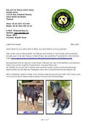 Info Giftanschlag März 2011 - The Dog Rescue Center Samui