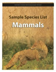 mammals - Southwest Florida Water Management District