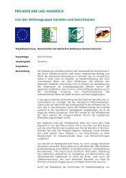 Freistellung und Rekonstruktion der ... - LAG Hunsrück