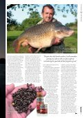 Frank takes a look at particles, those that perform well ... - Carpworld - Page 2